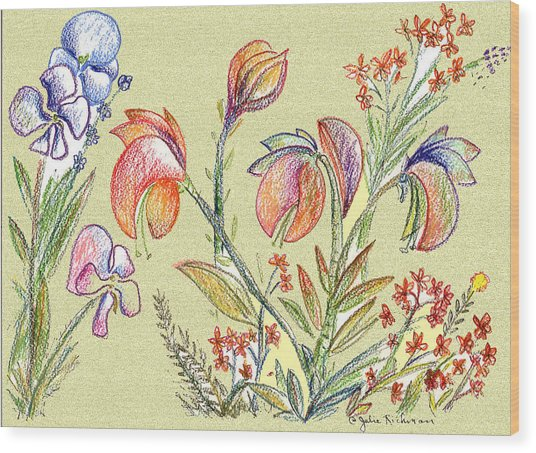 Strange Orchid Drawing Wood Print by Julie Richman