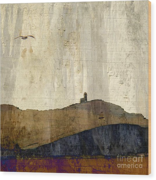 Strata With Lighthouse And Gull Wood Print