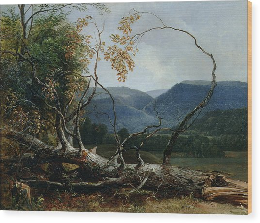 Stratton Notch - Vermont Wood Print