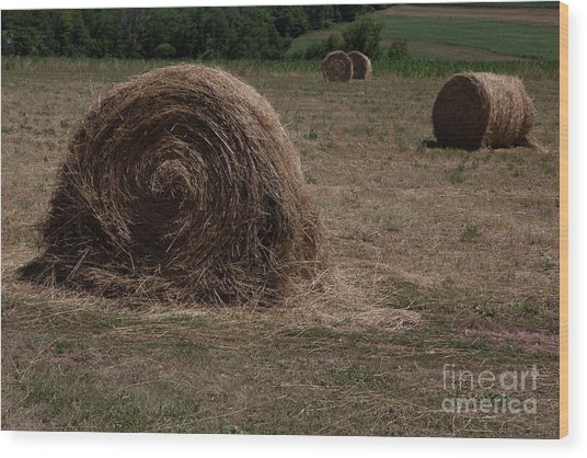 Straw Bales Wood Print