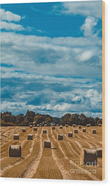 Straw Bales In A Field 2 Wood Print