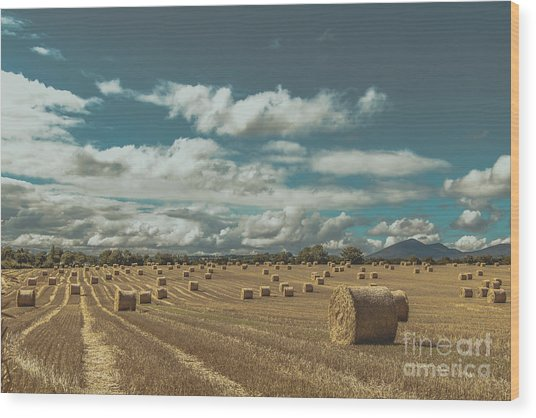 Straw Bales In A Field 3 Wood Print