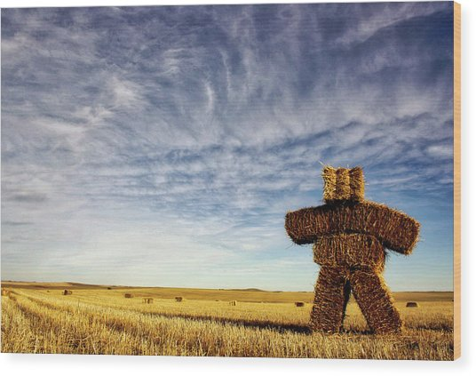 Strawman On The Prairies Wood Print