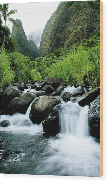 Stream Flowing From Iao Needle Wood Print