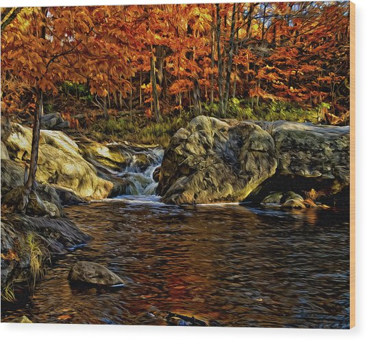 Stream In Autumn 57 In Oil Wood Print