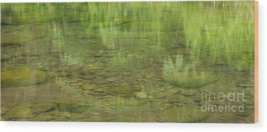 Stream Reflections Wood Print
