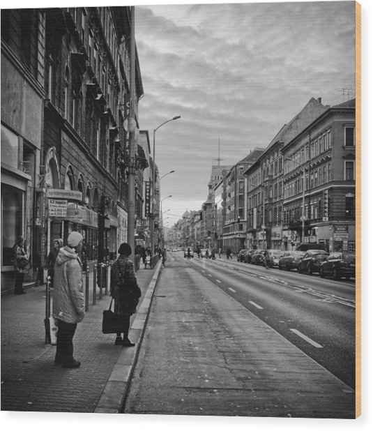 Streets Of Budapest Wood Print