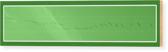 String Of Birds In Green Wood Print