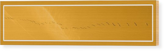 String Of Birds In Orange Wood Print