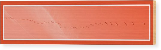 String  Of Brids In Red Wood Print