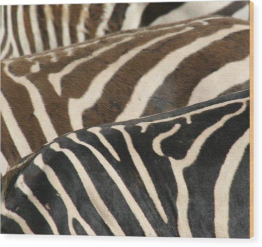 Stripes Wood Print by Donald Tusa