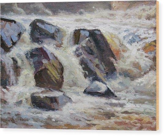 Strong Falls Plein Air Demo Wood Print by Larry Seiler