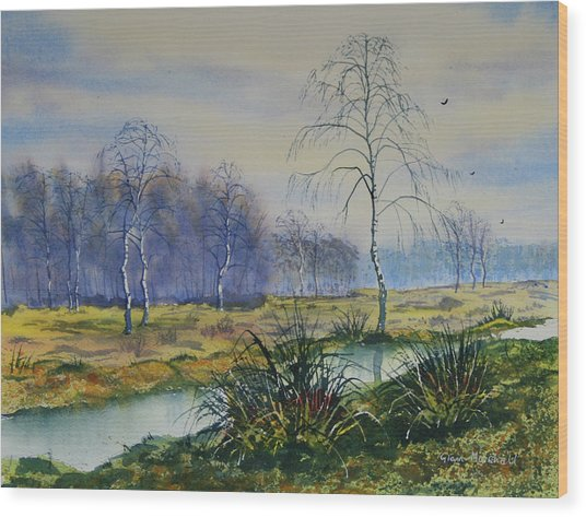 Stream In Flood On Strensall Common Wood Print