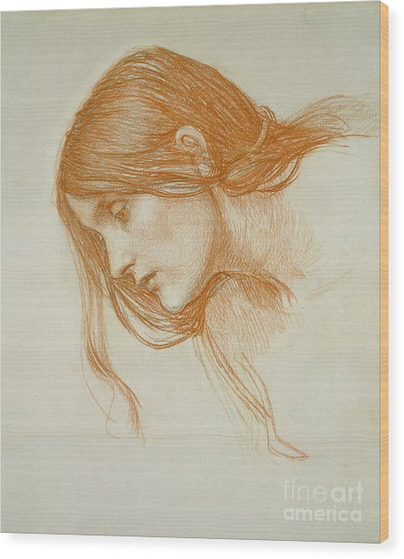 Study Of A Girls Head Wood Print