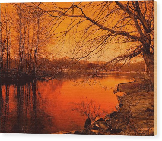 Studying The Sunset Wood Print