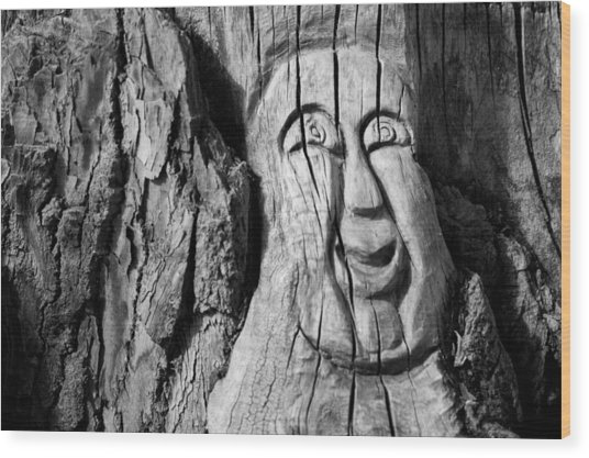 Stump Face 3 Wood Print