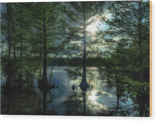 Stumpy Lake Wood Print