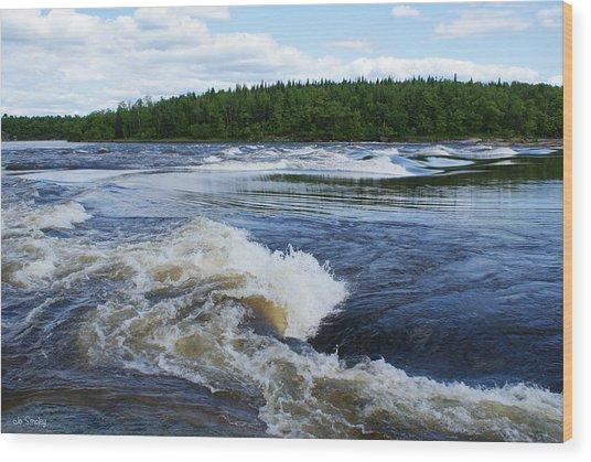Sturgeon Falls Manitoba Wood Print