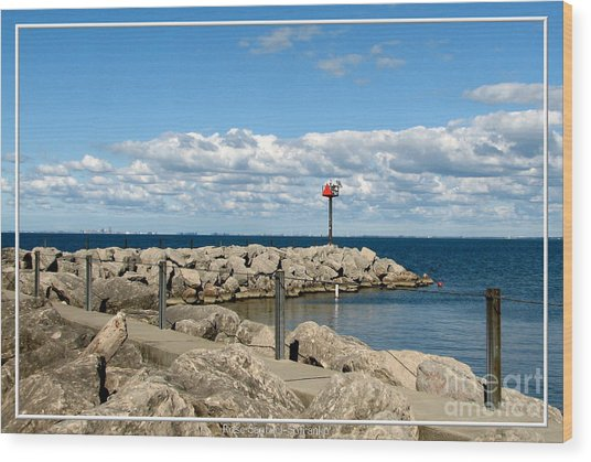 Sturgeon Point Marina On Lake Erie Wood Print