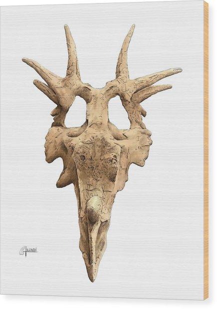 Styracosaur Skull Wood Print