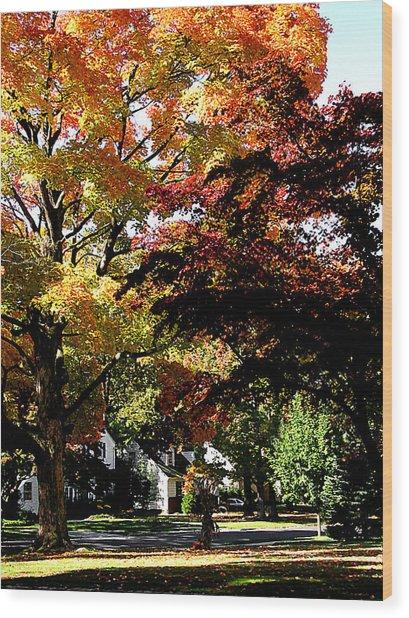 Suburban Autumn Wood Print by Susan Savad