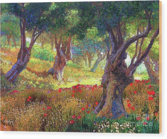 Poppies And Olive Trees Wood Print