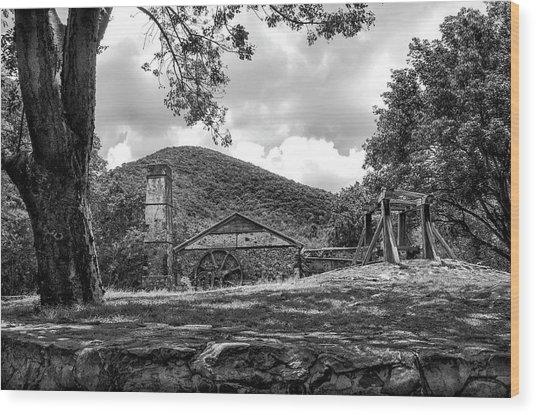 Sugar Plantation Ruins Bw Wood Print