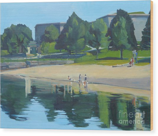 Summer At Castle Island Wood Print