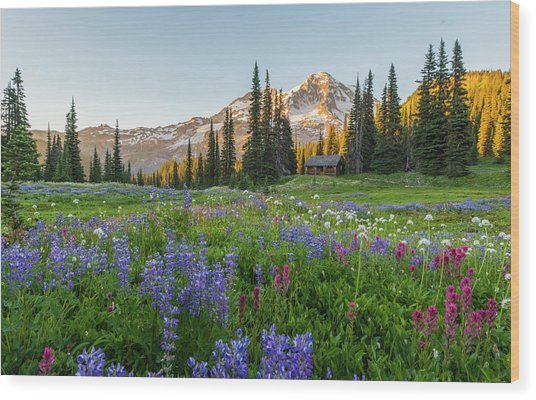Summer Beauty At Indian Henry's Hunting Ground Wood Print