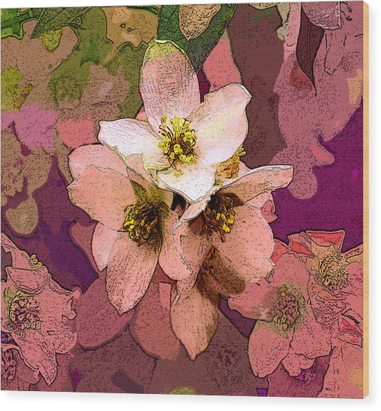 Summer Blossom Wood Print