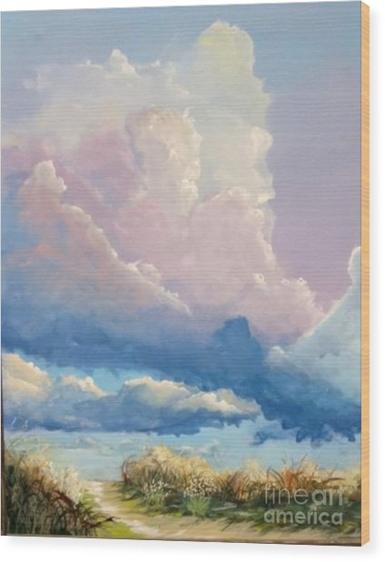 Summer Clouds Wood Print by John Wise