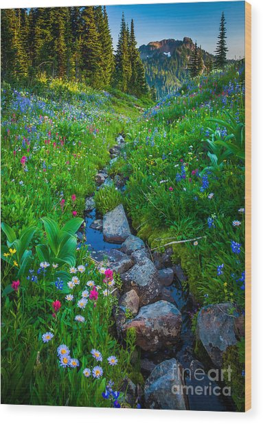 Summer Creek Wood Print