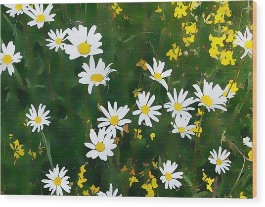 Wood Print featuring the digital art Summer Daisies by Julian Perry