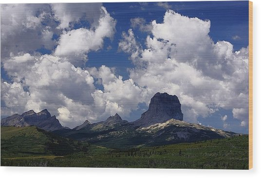 Summer Day At Chief Mountain Wood Print