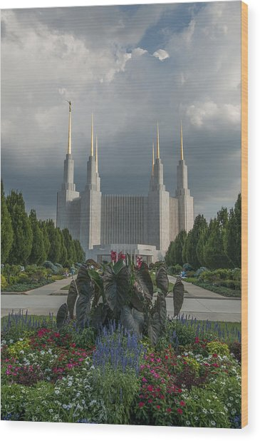 Summer Day At The Lds Wood Print