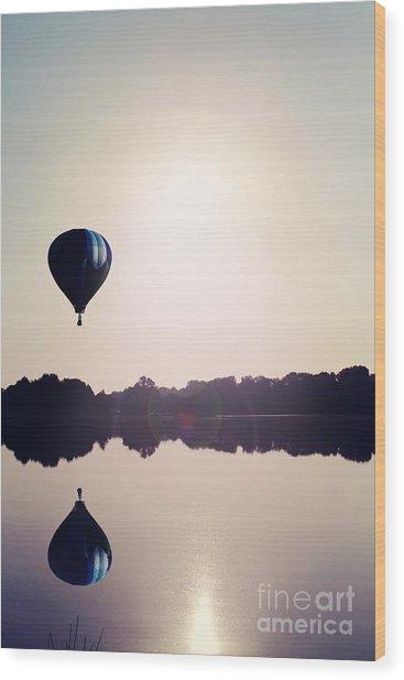 Summer Flight Wood Print
