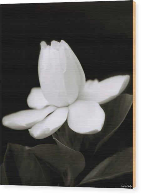 Summer Fragrance Wood Print