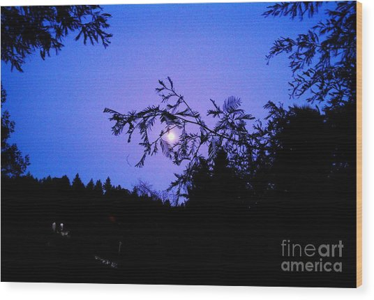 Summer Full Moon Wood Print