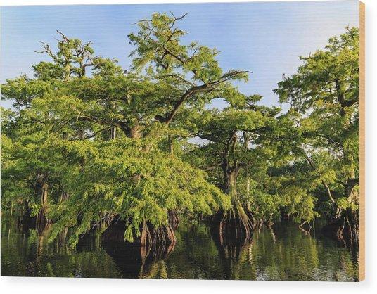 Summer Greens Wood Print