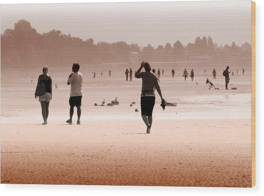 Summer Haze Wood Print by Barbara  White