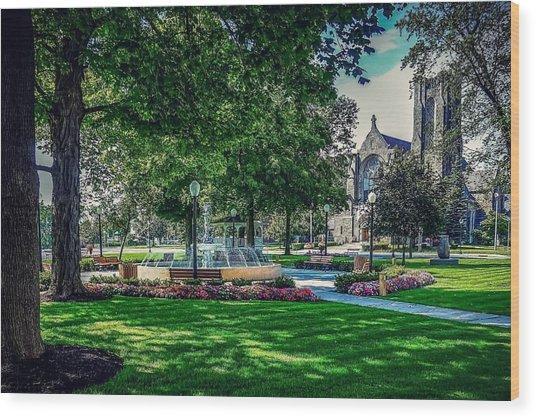 Summer In Juckett Park Wood Print