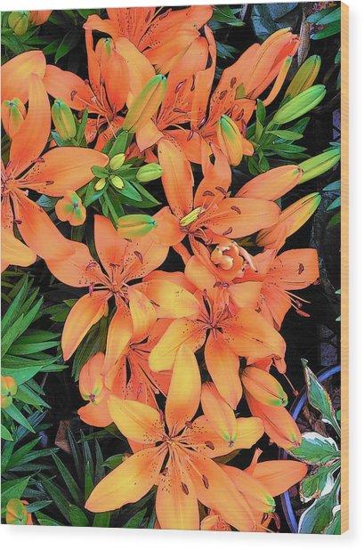 Summer Lily Wood Print