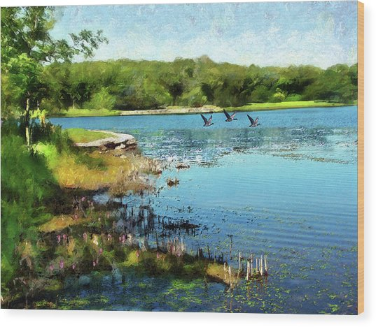 Summer On The Lake Wood Print