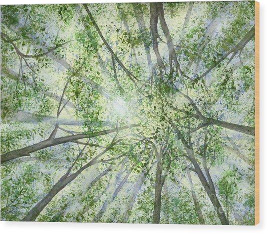 Summer Rays Wood Print
