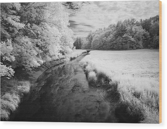 Summer Salt Marsh - Wells Maine Wood Print