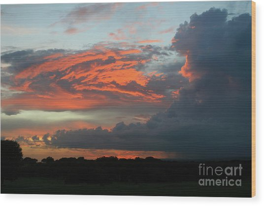 Summer Sky On Fire  Wood Print