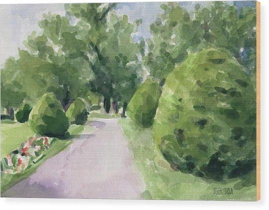 Summer Stroll Boston Public Garden Wood Print