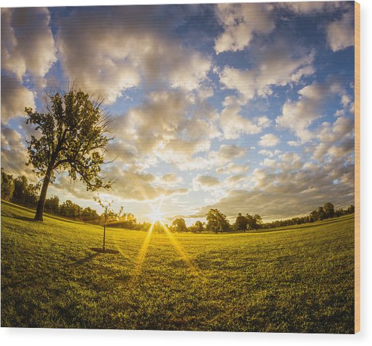 Summer Sunrise Across Delware Park Meadow Wood Print
