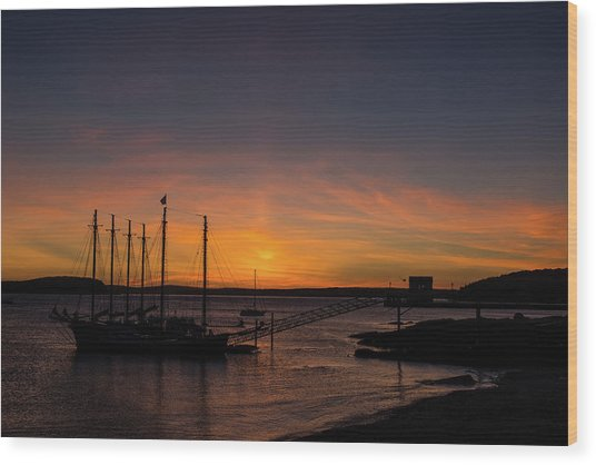 Summer Sunrise In Bar Harbor Wood Print
