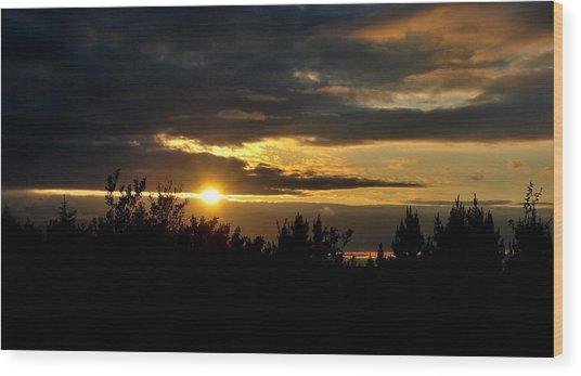 Summer Sunset Wood Print by Marilynne Bull